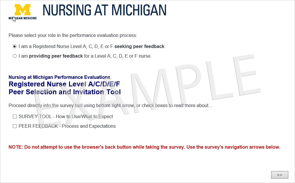 Nursing At Michigan Performance Evaluations